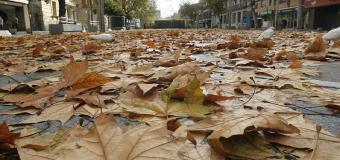 El otoño llega a Sevilla