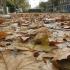 otoñosevilla