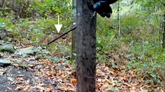 Un listón de madera de casi un metro de altura ha sido encontrado en el monte de Castrove, en Galicia. La trampa estaba repleta de clavos y obstaculizaba el paso en un camino frecuentado por ciclistas