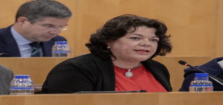 La portavoz del PP en la Diputación de Sevilla, Mª Eugenia Moreno