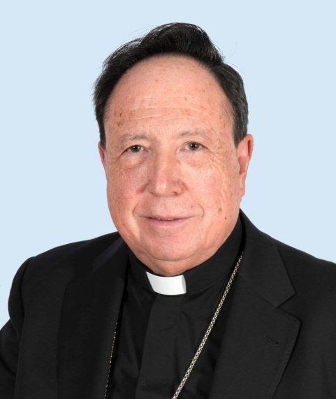 Mons. Juan del Río Martín