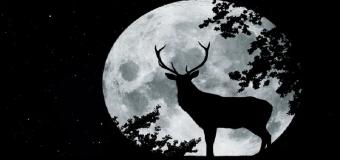 Llega la luna llena 'del ciervo'